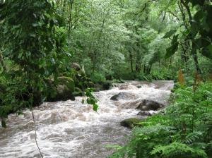 Río Vilacoba. Fotografía de Mela Estévez